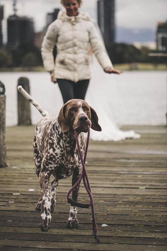 Bora + Jake // The Point Albert Park
